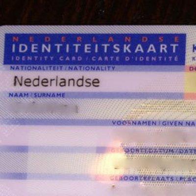 Hollanda Kimliği