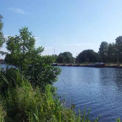 Amsterdam Ormanı parkı