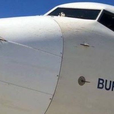 THY Burhaniye uçağına Nevşehir'de kuş çarpması
